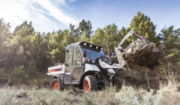 2019 Bobcat Toolcat™ 5600 full